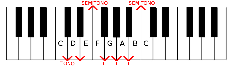 Scala Maggiore tono e semitono