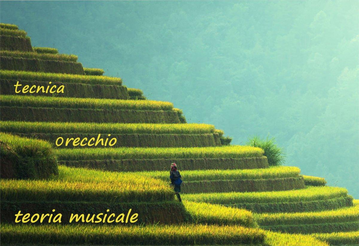 studiare-musica-crescere-in-modo-omogeneo
